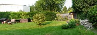 Garten-2013-06