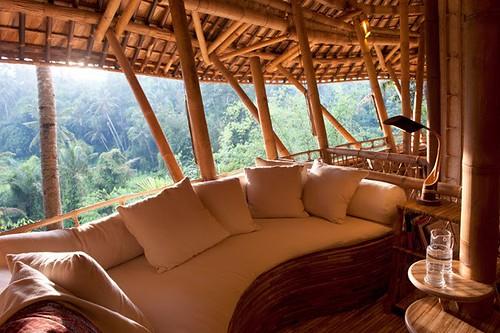 Bambus House v02