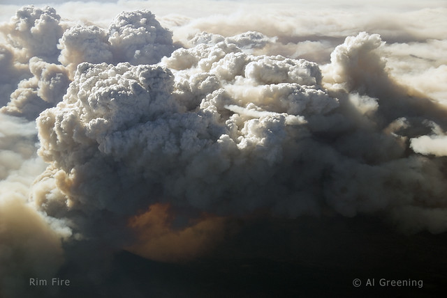 Rim Fire from the air by Al Greening