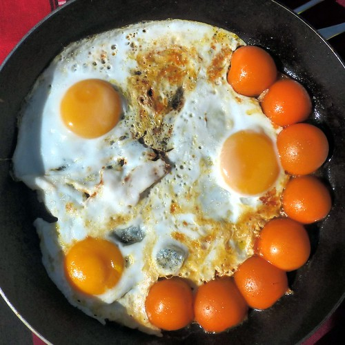 Sunnyside up - eggs and yellow tomatoes in the frying pan