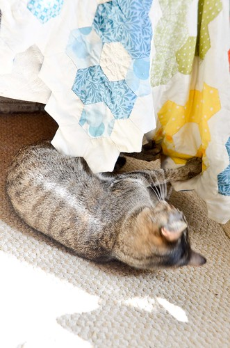 Dizzy Destroying the Hexagon Quilt Corners