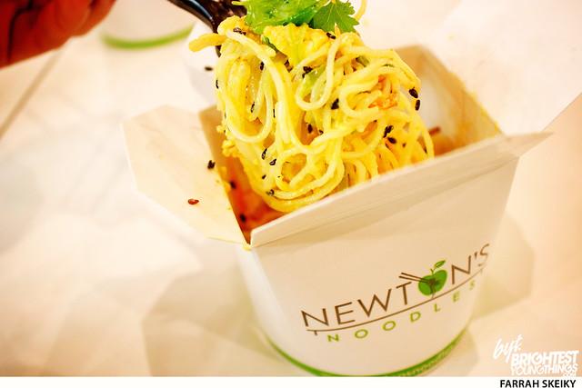 Newton\'s Noodles 01