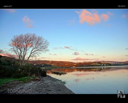 sunset newzealand tree water spring dusk sony silhouettes wetlands inlet alpha a77 porirua pauatahanui estary tomraven aravenimage q32013