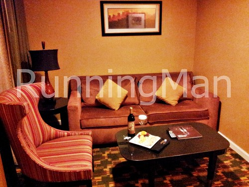 Hilton North Hotel 02 - Living Room