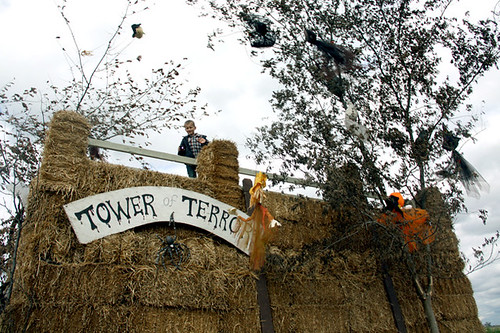 Tower-of-Terror