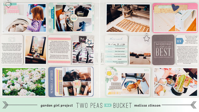 project life 2013 week 28.jpg