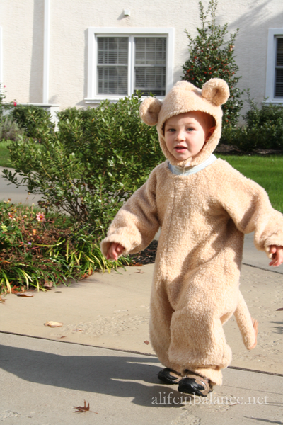 Homemade Halloween Costumes: Lion