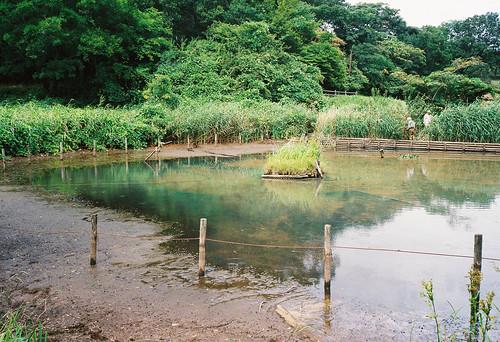 散策 [舞岡公園] : OLYMPUS μII