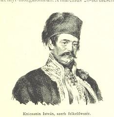 "British Library digitised image from page 291 of ""Az 1848-49-iki magyar szabadságharcz története [With illustrations.]"""
