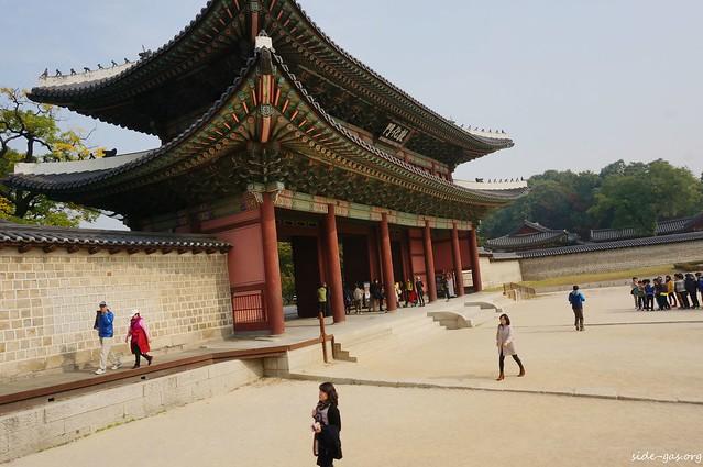 2013秋楓首爾~媲美秘苑的昌慶宮