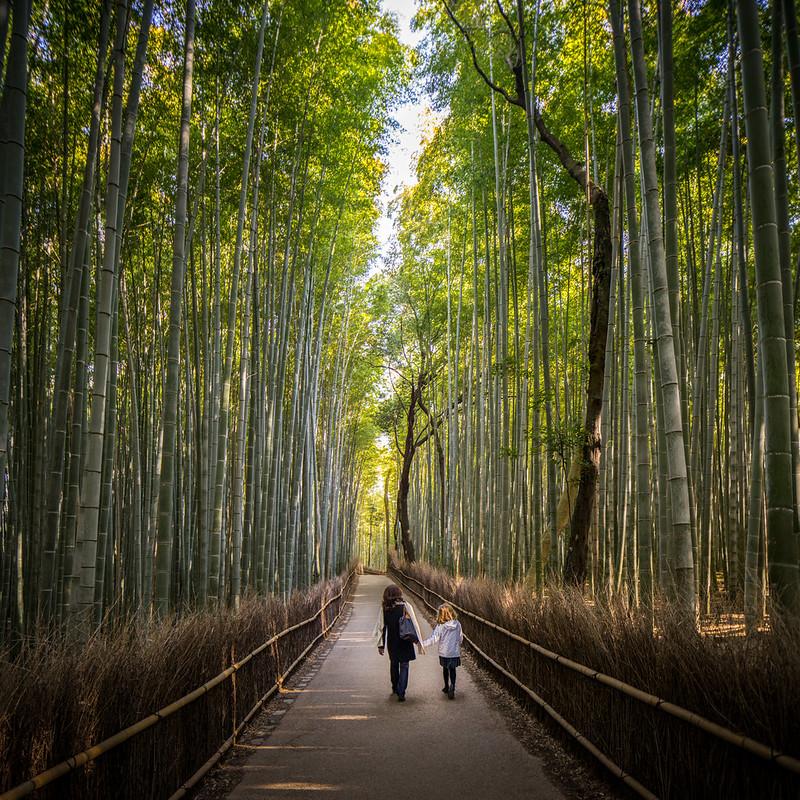 Modernist Architecture Spirited Away Kyoto