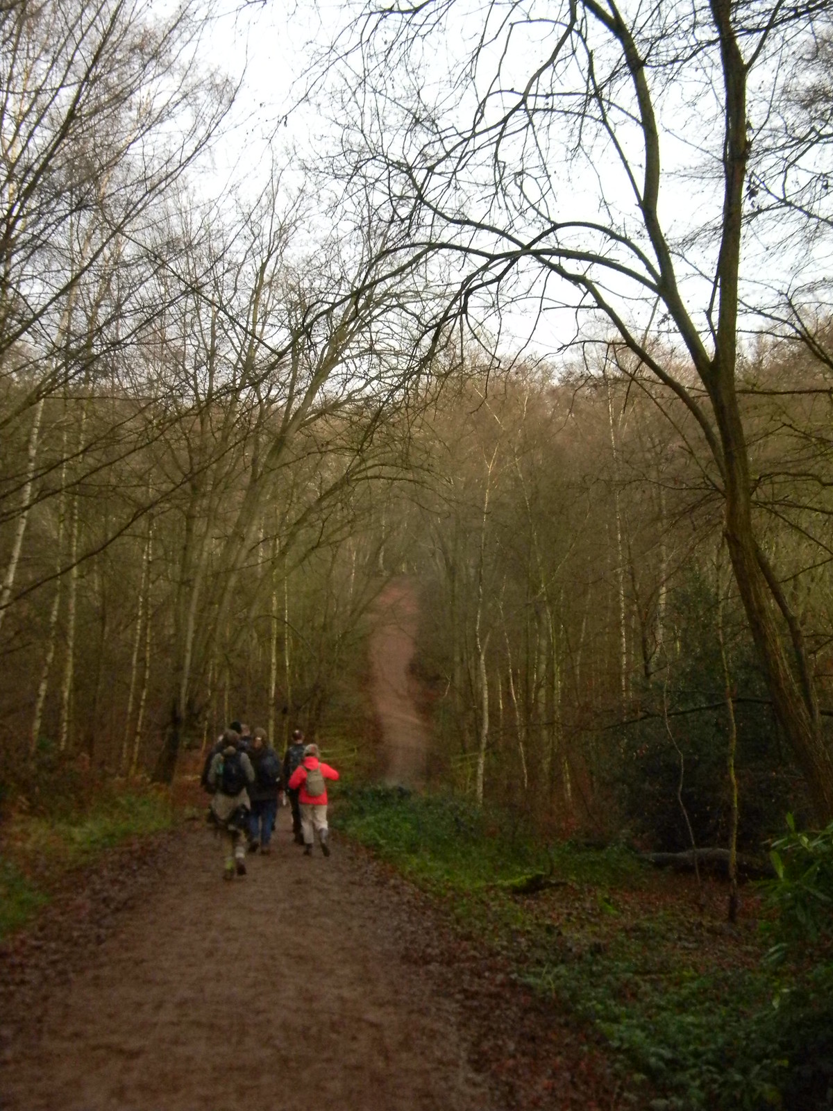 In Epping Forest Loughton to Epping