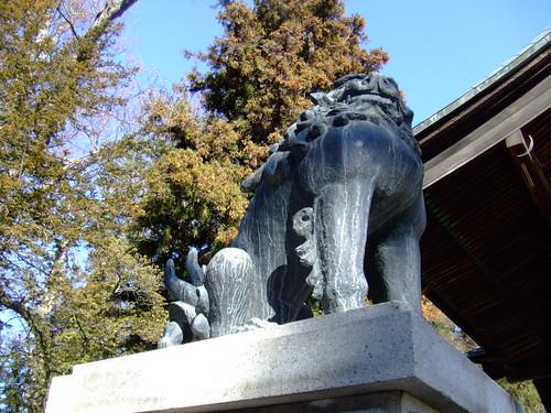 諏訪大社 下社・秋宮 狛犬