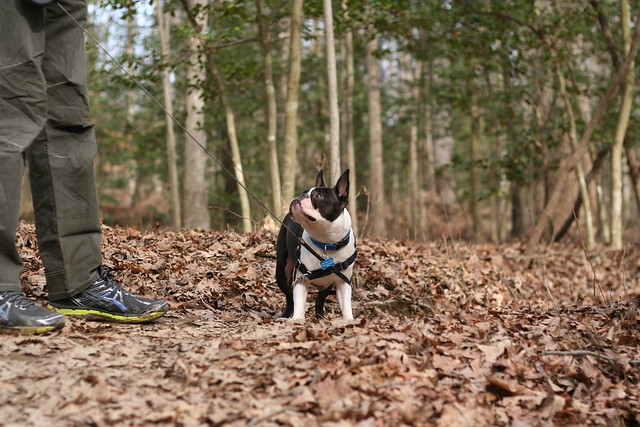 Charlie Powhite Hike Feb 2 (9)