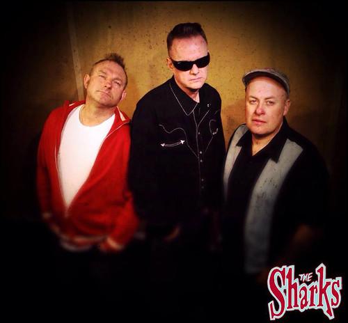 the sharks02