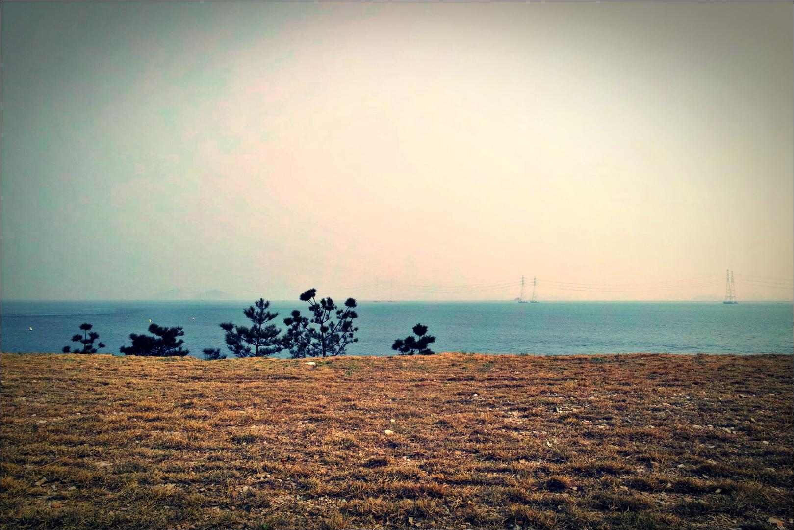 티라이트 휴게소 부근-'오이도에서 시화방조제 자전거 주행정보(Sihwa tide embankment)'