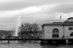 Geneva in grey