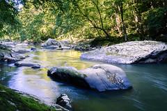 Slippery Rock Creek 4