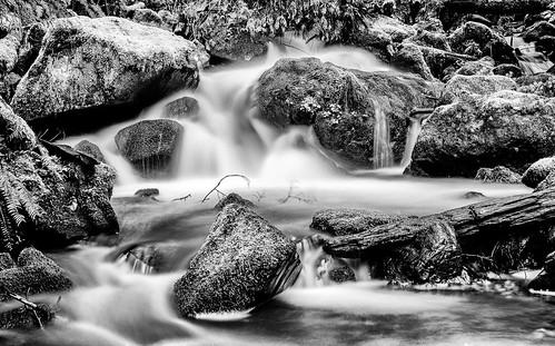 chuckanutdrive oystercreek waterfall bow washington unitedstates us landscape creek stream water longexposure slowshutterspeed blackandwhite monochrome trinterphotos richtrinter