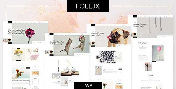 Pollux WordPress Theme free download