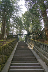 climbing up to the shogun's tomb