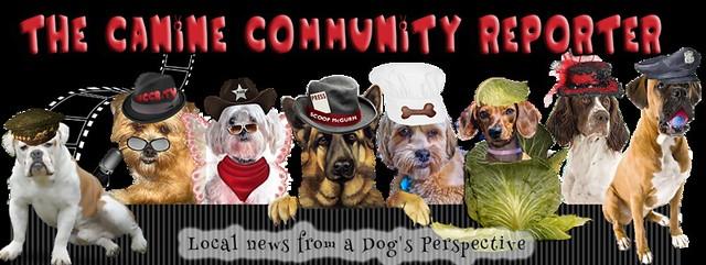 caninecommunityreporternews2