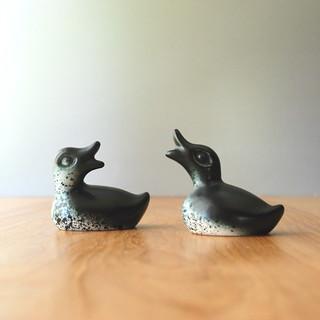 Howard Pierce Ducklings