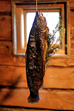 Fäviken - preserved fish