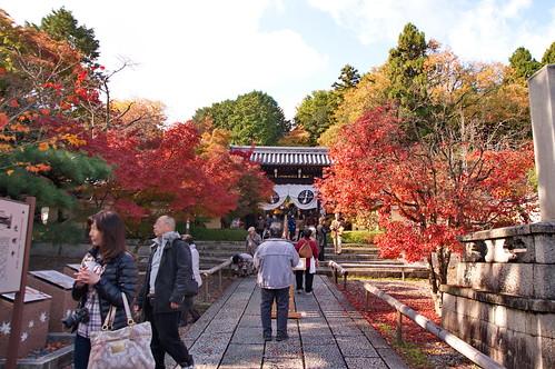 【写真】2012 紅葉 : 光明寺/2020-11-11/IMGP6487