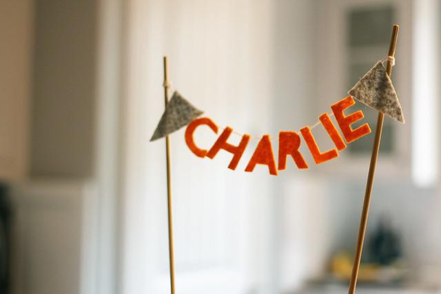 Charlie's Sprinkle, 7/13/13