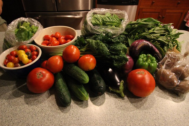 csa share :: week 10 + summer food......