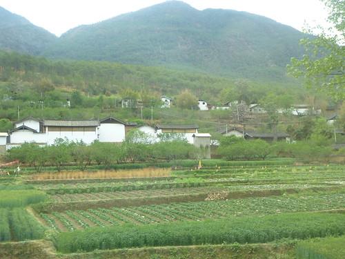 Yunnan13-Shangri La-Lijiang-Route (150)