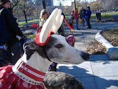 12-3-06 Jingle Bell Walk