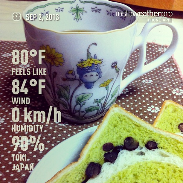 Rainy rainy day. It's nice to have a cup of hot coffee with my fave #totoro mug:)  Btw I am so sad about Hayao Moyazaki is retiring.. #weather #instaweather #toki #japan #day #summer #jp #totoro #ghibli