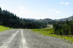 Gravel road among green hills