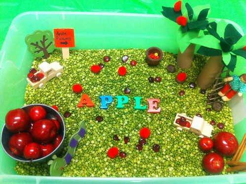 Apple Picking Sensory Tub (Photo from Play Create Explore)