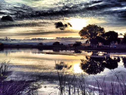 california trees sun lake sunrise landscape pretty calm antioch wayer hollingsworth contraloma contralomaregionalpark iphone5 teflection iphoneography snapseed originalfilter uploaded:by=flickrmobile flickriosapp:filter=original