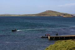 Falklands - Landscape
