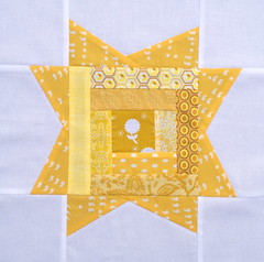 3 x 6 bee Star hive - Sara's (thompson.sarag) block