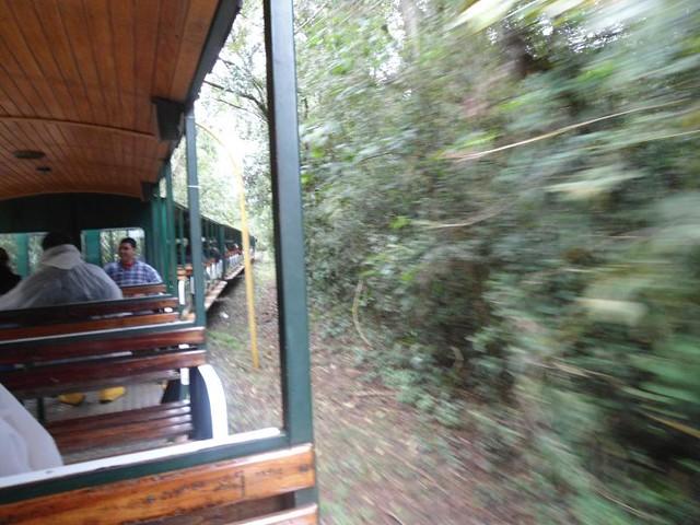 Tren turístico de uso interno