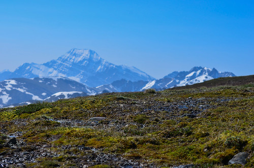 <p>Whistlers, Jasper National Park, Alberta, Canada<br /> Nikon D5100, 70-300 mm f/4.5-5.6<br /> July 8, 2012</p>