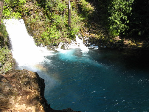The McKenzie River at the base of Tamolitch Falls – meaning bucket in Chinook – flows during the spring runoff. Five miles downstream of Clear Lake, the falls was created when a lava flow dammed the McKenzie.  (U.S. Forest Service)