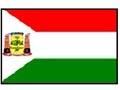 Bandeira da cidade de Várzea Grande