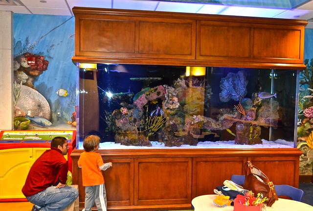 The Breakers - Family Center - Aquarium