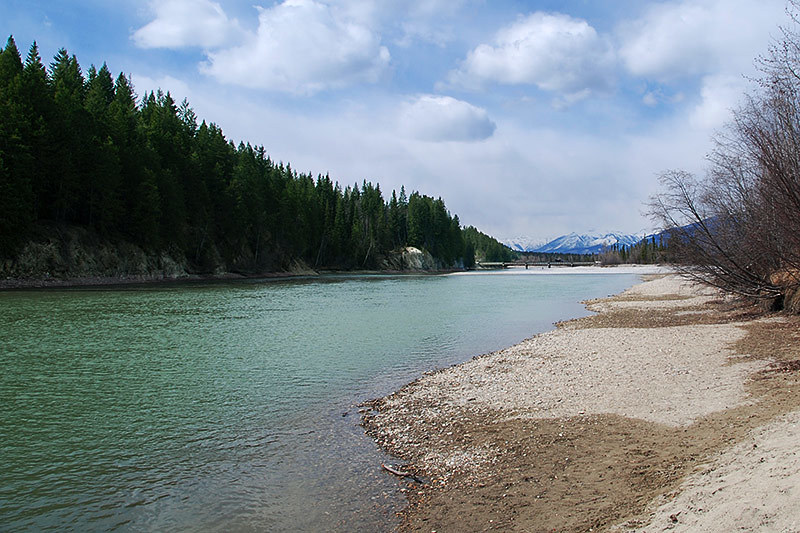 Columbia River in Golden, BC Rockies, Kootenay Rockies, British Columbia, Canada