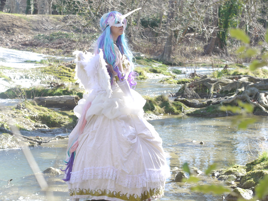 related image - Shooting Celestia - My Little Pony - 2014-02-23- P1780557