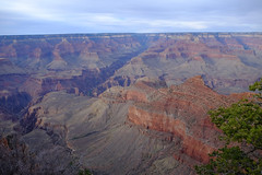canyon(1.0), formation(1.0), geology(1.0), plateau(1.0), terrain(1.0), wadi(1.0), badlands(1.0), escarpment(1.0),