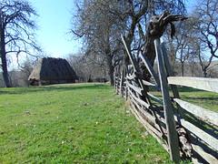 locuri deschise, triste garduri/open spaces, sad fences