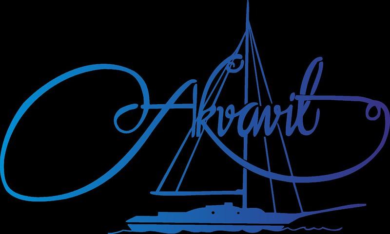 logotipo barco2