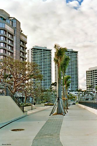 florida westpalmbeach officebuilding skyscraper sidewalk palmtrees architecture